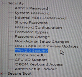 In the Security section, locate the TPM option