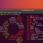 How to display Linux distro ASCII logo art in terminal