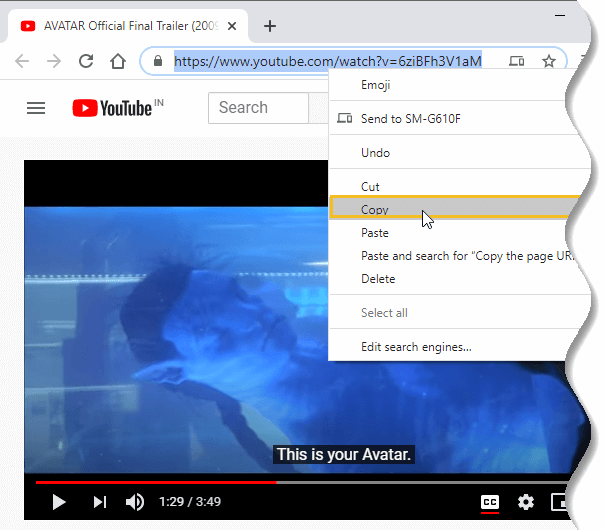Download YouTube Subtitles - copy video URL from browser address bar