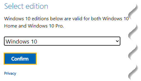 Download Windows 10 offline ISO - Windows 10 edition to download - Confirm